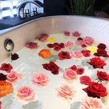1日1組限定】薔薇と香りに包まれて心と体をリラックス!至福のひとときを「薔薇風呂プラン」